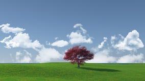 Widescreen tree landscape Stock Photos