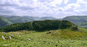 Widescreen view of Glencoyne Wood, Lake District. Looking across col from the base of Heron Pike, Glenridding Dodd behind the trees royalty free stock images