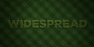 WIDESPREAD - fresh Grass letters with flowers and dandelions - 3D rendered royalty free stock image. Can be used for online banner ads and direct mailers Stock Photography