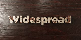 Widespread - grungy wooden headline on Maple  - 3D rendered royalty free stock image. This image can be used for an online website banner ad or a print Royalty Free Stock Photos