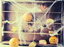 Widmowy Halloweenowy tło z pająkami i sieciami zdjęcia royalty free