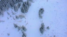 Widoków z lotu ptaka snowboarders na narciarskim dźwignięciu na śnieżnej górze w ośrodku narciarskim i narciarki zbiory wideo