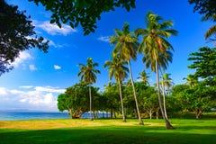 Widok łąka tropikalna wyspa zdjęcie royalty free