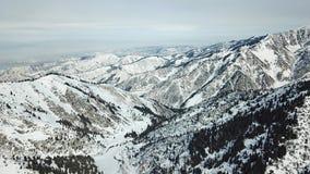 Widok śnieżni wzgórza z jodłami jest całkowicie szczęśliwy i jeśli obraz góry dziękuję zimy są używane w, Zdjęcie Stock