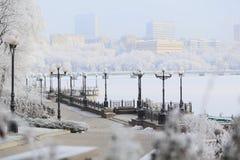 Widok śnieżysty miasto park fotografia royalty free