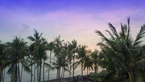 Widok świt słońce nad morzem przez drzewek palmowych na plaży, Bali, Indonezja zbiory