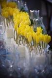 Widok żółci tulipanowi rzędy Zdjęcia Royalty Free