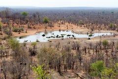 Widok afrykanina krajobraz Zdjęcia Royalty Free