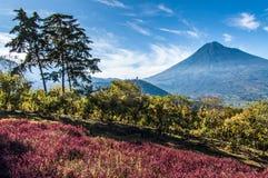 Widok Agua wulkan na zewnątrz Antigua, Gwatemala obraz royalty free