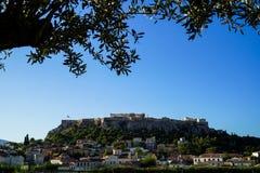 Widok antyczny akropol od Monastiraki kwadrata przez starych grodzkich budynków z drzewa oliwnego ulistnieniem, ostrość na tle Fotografia Stock