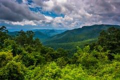 Widok Appalachians od Błękitnego grani Parkway w północy Ca zdjęcie royalty free