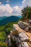 Widok Appalachians od szczytu Tibbet gałeczka, Zachodnia Virginia. Zdjęcie Stock