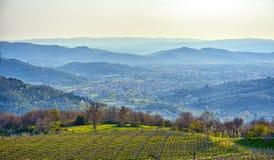 Widok Arezzo Zdjęcie Royalty Free