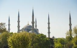 Widok Błękitny meczet w Istanbuł Obraz Royalty Free