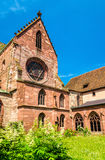 Widok Basel ministra katedra obrazy stock