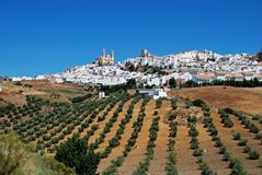 Biały miasteczko, Olvera, Andalusia, Hiszpania. obraz stock