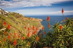 widok blisko Funchal miasteczka, madery wyspa, Portugalia zdjęcie royalty free