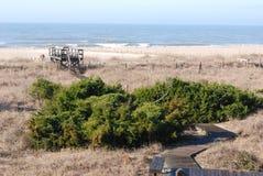 Widok boardwalk przy Łysej głowy wyspą i ocean, SC Obrazy Royalty Free