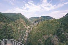 Widok carpathian góry od wierzchołka - rocznika ekranowy kibel Fotografia Stock