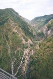 Widok carpathian góry od wierzchołka - rocznika ekranowy kibel Zdjęcia Stock