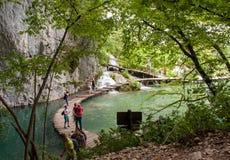 widok Croatia jezior park narodowy plitvice widok Obrazy Stock