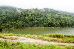 Widok dżungla i Halna rzeka w Malezja lesie tropikalnym z Chmurnym Burzowym niebem szczytów i Małej Bujny dżungli Zielona roślinn obrazy stock