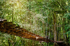 Widok długi zawieszenie most w słońce promieniach Zdjęcia Stock