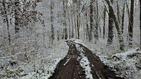 Widok dirtyroad w zima lesie zdjęcie wideo