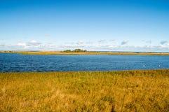 Widok dla ptaków raju połysk: Ptasi Raj rezerwat przyrody przy Sobieszewo wyspą w Gdańskim Obraz Royalty Free