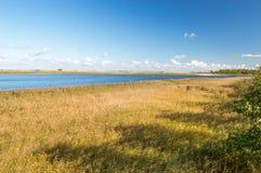Widok dla ptaków raju połysk: Ptasi Raj rezerwat przyrody przy Sobieszewo wyspą w Gdańskim Obraz Stock