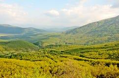 widok doliny Obrazy Royalty Free