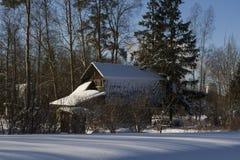 Widok dom w śnieżnej lasowej pobliskiej świerczynie i drzewach obrazy royalty free