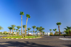 Widok droga i drzewka palmowe blisko hoteli/lów Zdjęcia Stock
