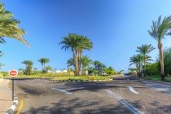 Widok droga i drzewka palmowe blisko hoteli/lów Obraz Stock