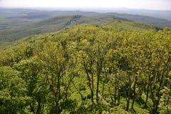 Widok drzewa, góry i wzgórza, Fotografia Stock