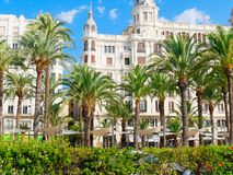 Widok drzewka palmowe w Alicante i miasto Hiszpania Zdjęcie Royalty Free