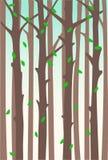 Widok Drzewni bagażniki royalty ilustracja