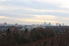 Widok Frankfurt linia horyzontu od Lohrpark Zdjęcie Royalty Free
