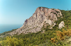 widok góra Obrazy Stock