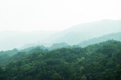 Widok góra Obraz Stock