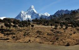Widok góra Ama Dablam Zdjęcie Stock