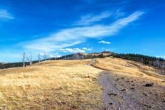 Widok góra Washburn Zdjęcia Stock