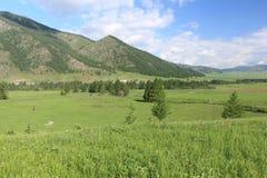 Widok górska wioska Elo, Altai, Rosja Zdjęcie Stock
