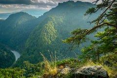 Widok górski, halna panorama, halna rzeka, wycieczka góry Fotografia Royalty Free