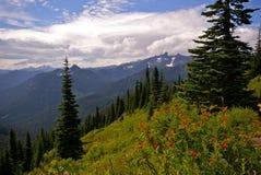 Widok górski w stan washington Zdjęcia Royalty Free