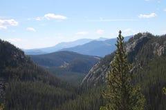Widok górski wzdłuż Beartooth autostrady Zdjęcia Stock