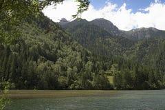 Widok górski z jeziorem i lasem zdjęcia stock