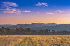 Widok góry Zdjęcie Stock