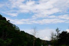 Widok góry, niebo, leje się wśród zielonych lasów Fotografia Stock