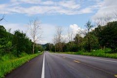 Widok góry, niebo, leje się wśród zielonych lasów Fotografia Royalty Free